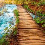 خودت پل خودت را بساز – یک نکته ناب از شیوانا
