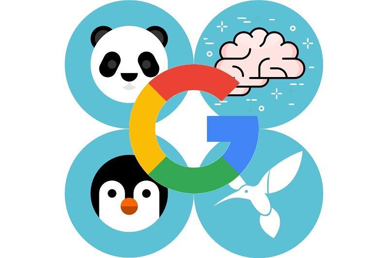 الگوریتم های سئو,الگوریتم های سئو گوگل,بهینه سازی سایت