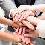 ویژگی های تیم بازاریابی حرفه ای