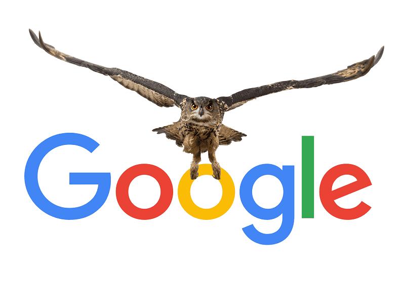 الگوریتم جدید گوگل,الگوریتم های جدید گوگل,الگوریتم های موتور جستجوی گوگل