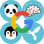 آپدیت الگوریتم های گوگل از 2011 تا 2018
